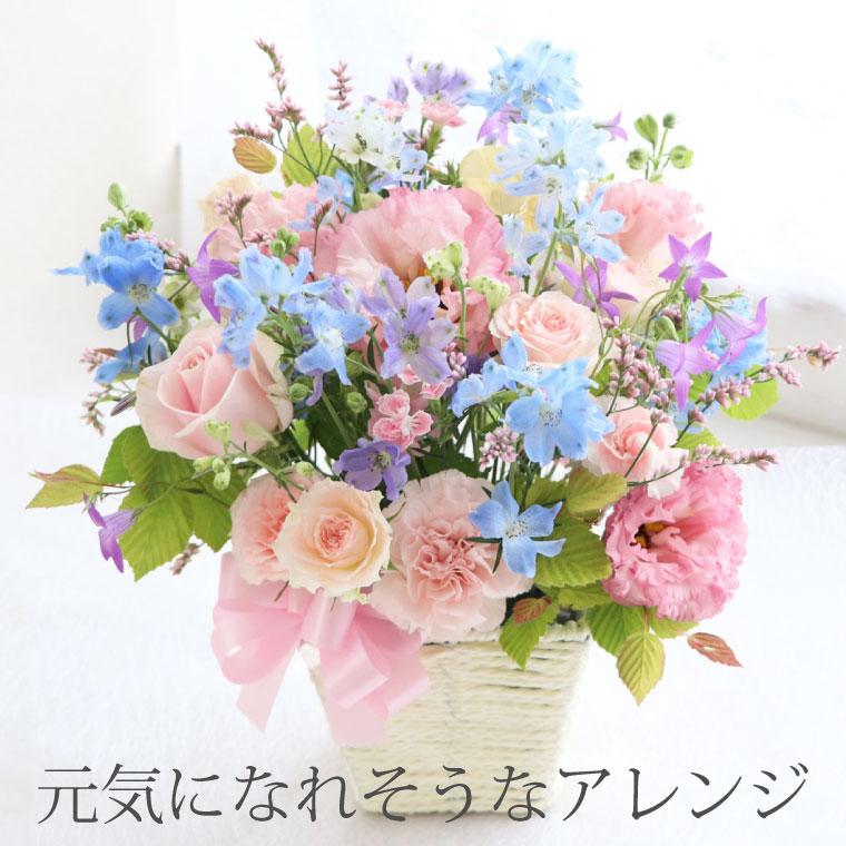 元気になれそうな花